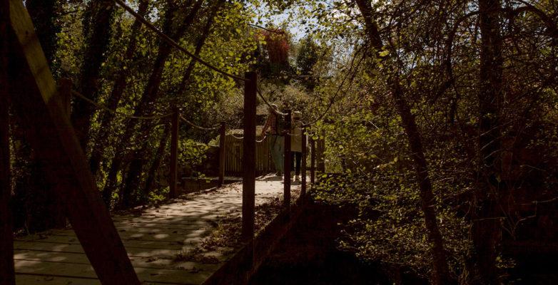 paseo-puente-rio-sarela
